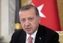 Эрдоган высоко ценит сотрудничество с Россией по Сирии