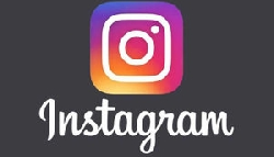 Choupette: у кота Карла Лагерфельда появился канал в Instagram