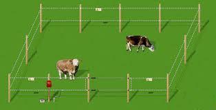 Электроизгороди для содержания КРС, лошадей, овец, свиней
