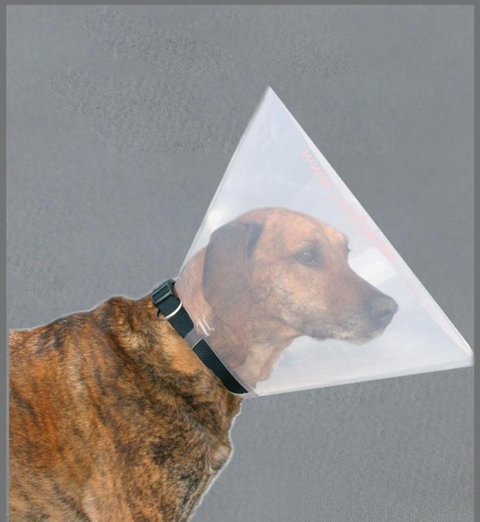 защитный воротник для крупных собак