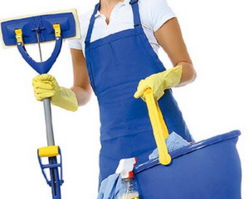 Требуется профессиональная домработница с проживанием.