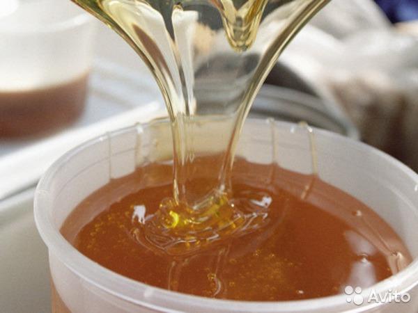 Экономьте до 50% уже сегодня покупая мед у производителя по оптовым ценам