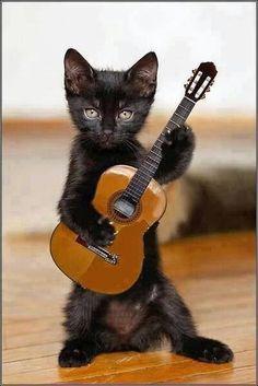 Курсы гитары для новичков