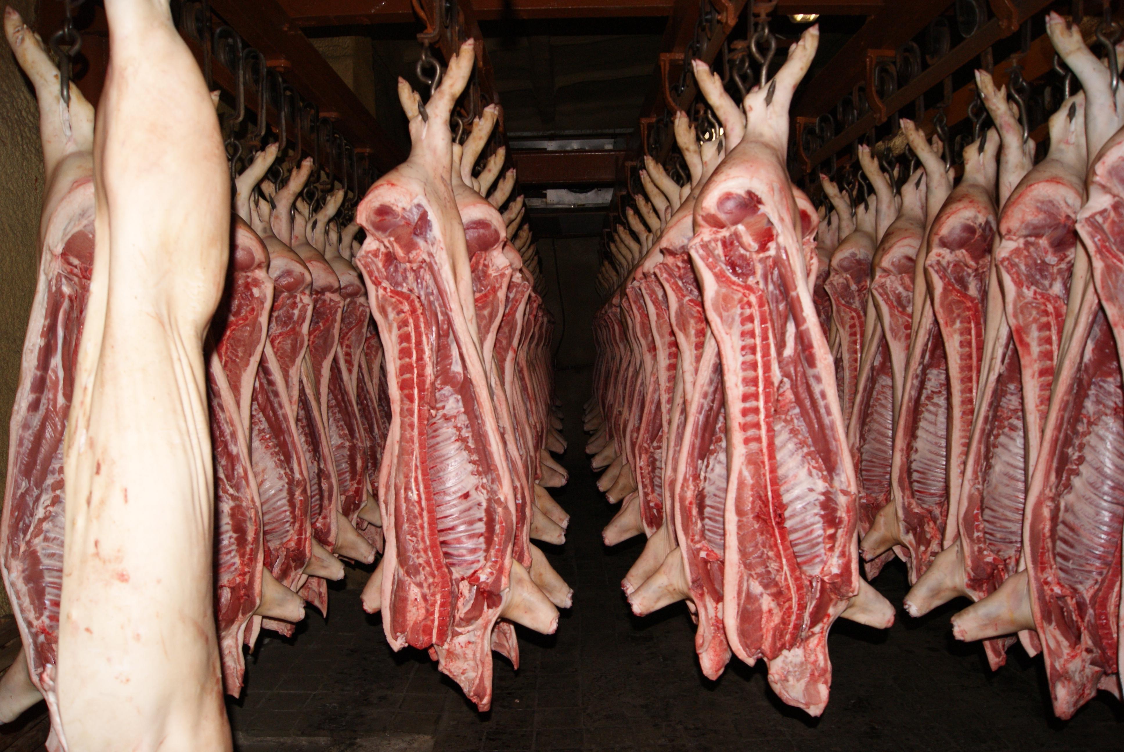 Свежая свинина полутушками
