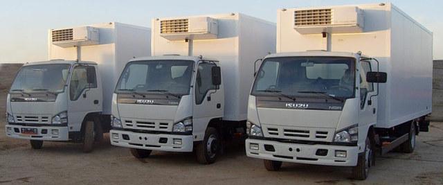 Доставка грузов на рефрижераторах 5,10,20 тонн (+25/-22гр.)