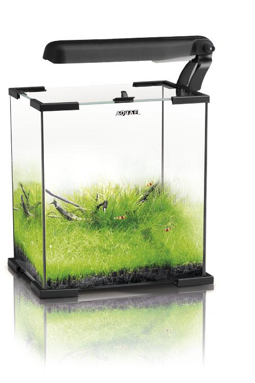 Продам аквариумы 10,20,30л