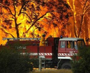 В Австралии горят леса и жилища.
