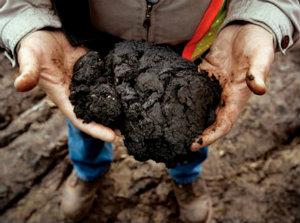 Дешевая нефть ударила по сланцевой добыче.