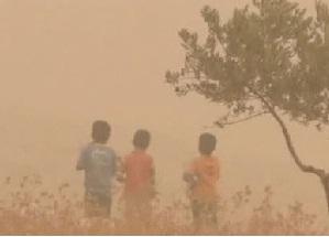 Буря на Ближнем Востоке привела к перемирию в Сирии